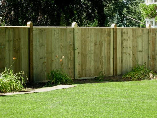 fence_and_stuff_007_8847.jpg